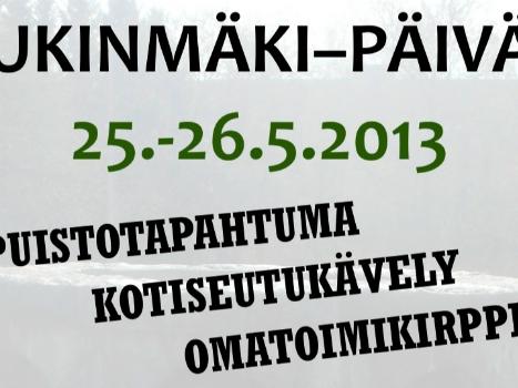 pp2013